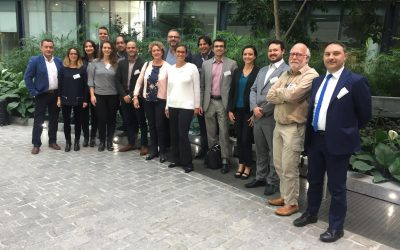Remaghic, Final Review Meeting in Brussels
